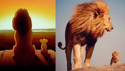 童話故事成真!真實重現迪士尼動物們