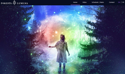 燈光效果綺麗 走進加拿大魔幻森林