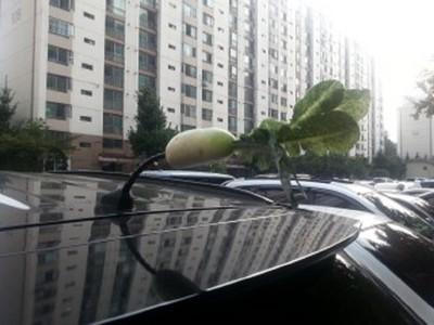 出門要去買蘿蔔…車頂天線也能拿嗎?