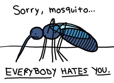 蚊子狂叮人不是因為餓了 是因為牠...渴了!缺水時蚊子攻擊力Up Up