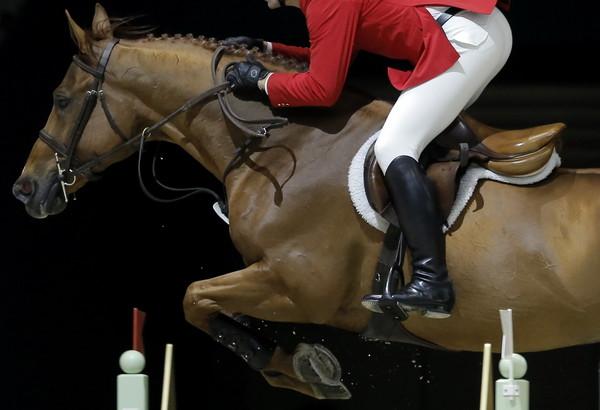 被太多人騎「腰背受傷」 女控馬場70萬元賣殘疾老馬涉詐