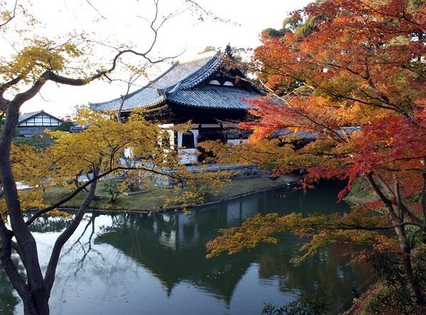 京都必拜10大廟宇神社 求良緣、財運、賞櫻一次滿足
