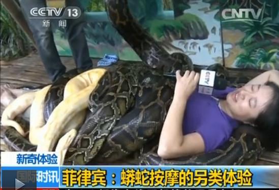 菲律賓,蟒蛇,央視,女記者,按摩