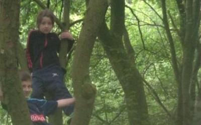 郊遊地的窟窿眼少年,靜靜看孩子爬樹