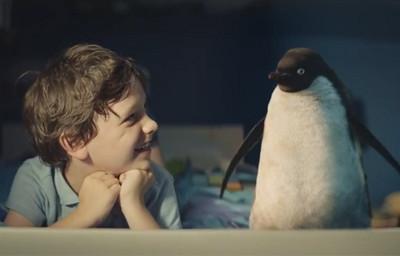 在一起仍寂寞..男孩給了企鵝朋友驚喜