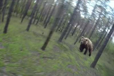 花惹發!騎單車進森林,轉頭熊在追我