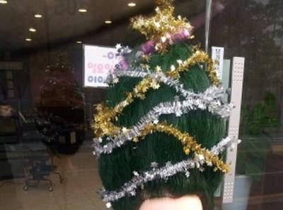 美容院限定聖誕樹!是想嚇屎誰呀~