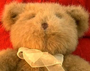泰迪熊肚裡硬硬的,挖開…怎是骨灰罈