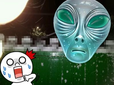下了場大雪後,我家門上出現了外星人