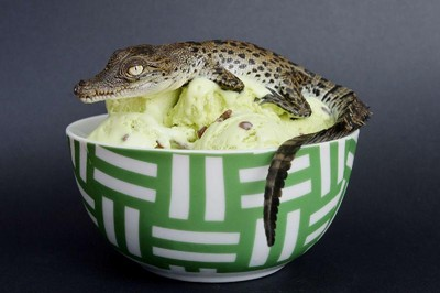 想吃冰淇淋…老闆來個鱷魚蛋口味吧~