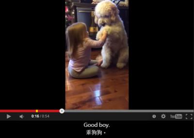 最萌訓犬師教你讓毛孩聽話,來~握手