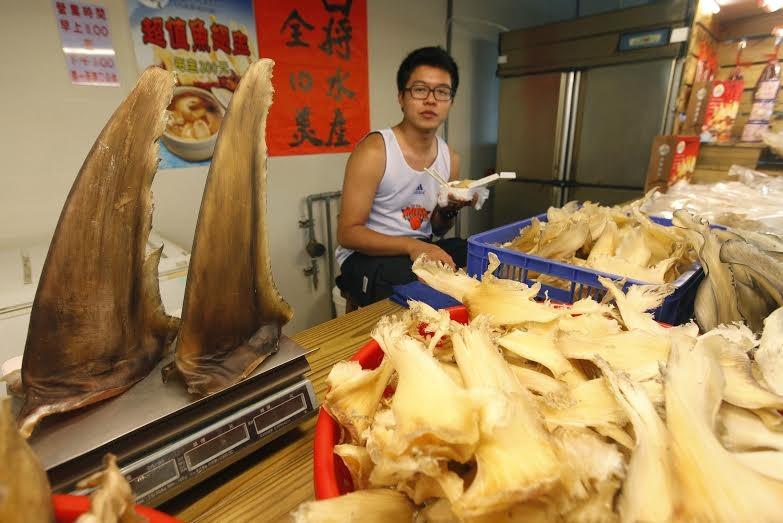 環保團體推改吃永續年菜。魚翅。(圖/綠色和平提供)