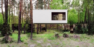 波蘭打造林中小屋,卻出現~時空裂縫