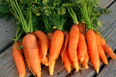 小蘿蔔被廚師切又搓+撒鹽,竟變成..