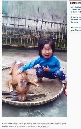 越南女童愛犬走失 走過狗肉攤驚叫痛哭:「那是花花」